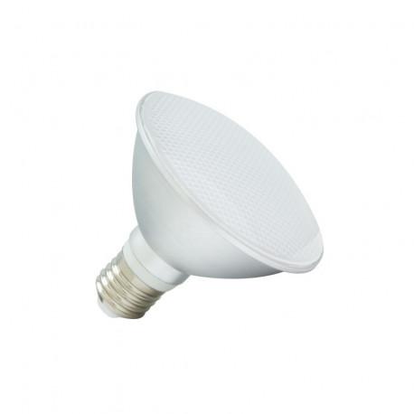 E27 LED bulb PAR30 10W Waterproof IP65