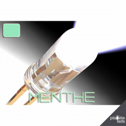 Led ColorPrecision 5mm MENTHE